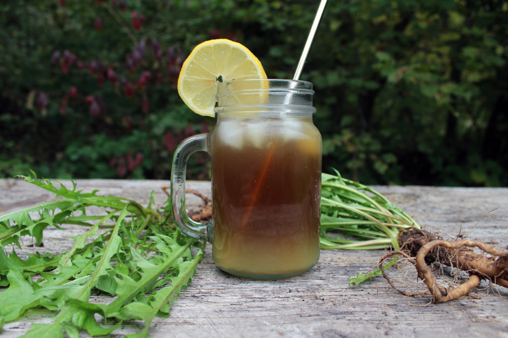 dandelion iced tea root use