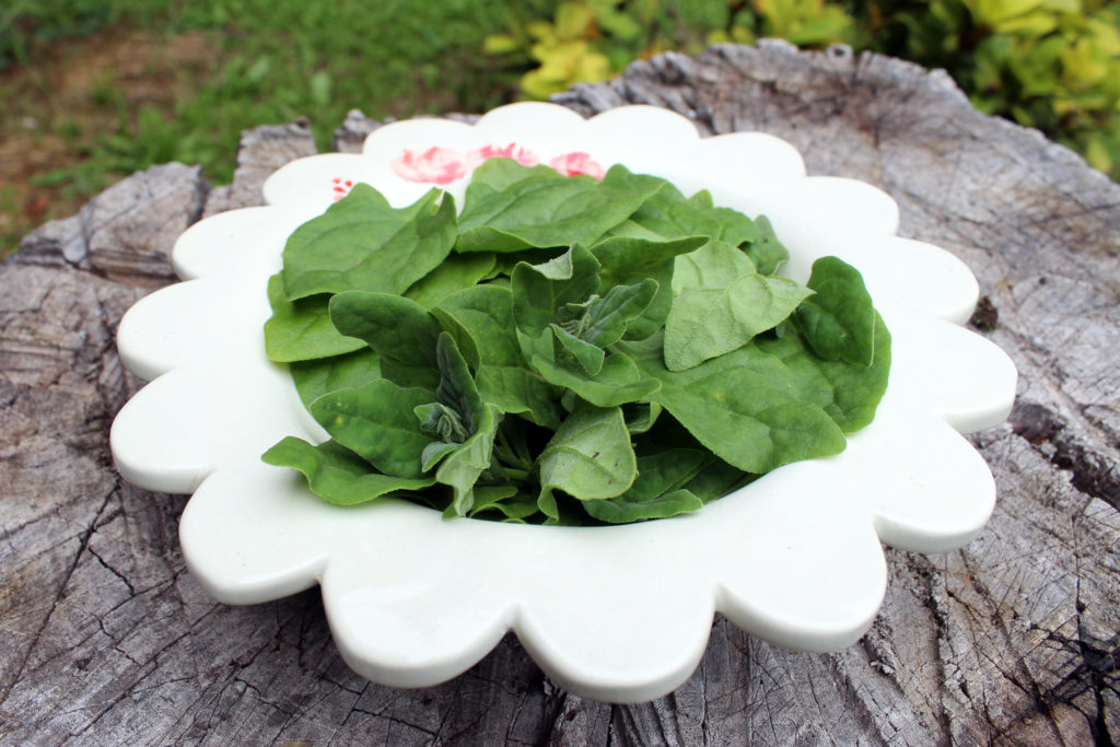 spinach iron folic acid pregnancy natural